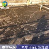 现货供应 降总氮 总氮去除剂 降氨氮污水处理 黑色粉末