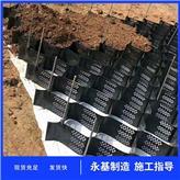 贵州安顺护坡土工格室 打孔压花土工格室规格