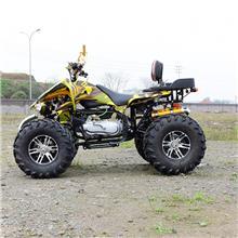 大火星沙滩车 越野沙滩车 四轮摩托车