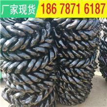 肥城电厂26*92开口环 矿用紧凑圆环链加工方式 锻打圆环链