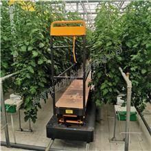 厂家生产 温室采摘升降车 果树大棚采摘车 蔬菜轨道式采摘车