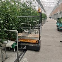 朗瑞奇生产 温室采摘升降车 无土栽培设备 轨道行走升降机