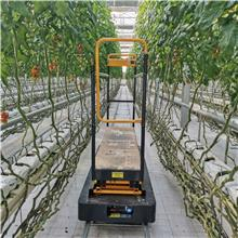 生产 蔬菜大棚采摘机 大棚轨道采摘车 温室轨道采摘车