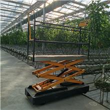 朗瑞奇生产 大棚作业登高车 蔬菜大棚采摘机 大棚轨道采摘车