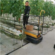 供应 大棚番茄采摘车 水果采摘登高车 轨道行走升降机