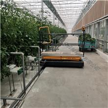 厂家供应 蔬菜轨道式采摘车 温室轨道采摘车 蔬菜半自动升降车