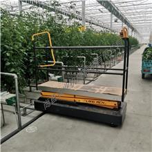 支持定制 蔬菜轨道式采摘车 大棚采摘升降平台 液压升降平台