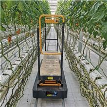 生产加工 蔬菜大棚采摘机 大棚采摘升降平台 蔬菜轨道式采摘车