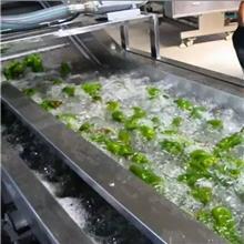 果蔬清洗流水线 婆婆丁清洗机 中央厨房净菜加工成套设备 佳品机械