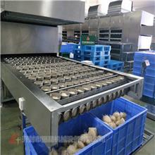 大型碗装粉丝生产线的工艺现场 无需加明矾 链条传动生产的方便粉丝机设备