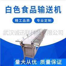 武汉西安长沙平行输送机皮带线厂家直销