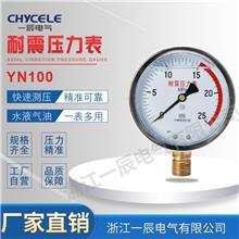 廠家供應YN100充油耐震壓力表 防腐蝕耐高溫真空壓力儀表精準測壓