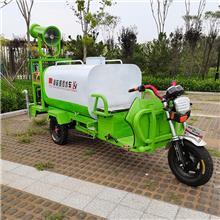 厂家供应工地小型雾炮洒水车 新能源多功能消毒雾炮车 绿化洒水三轮车价格