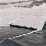 养殖防渗膜 HDPE防渗膜 城建土工膜 厚度0.3-2.0mm土工膜
